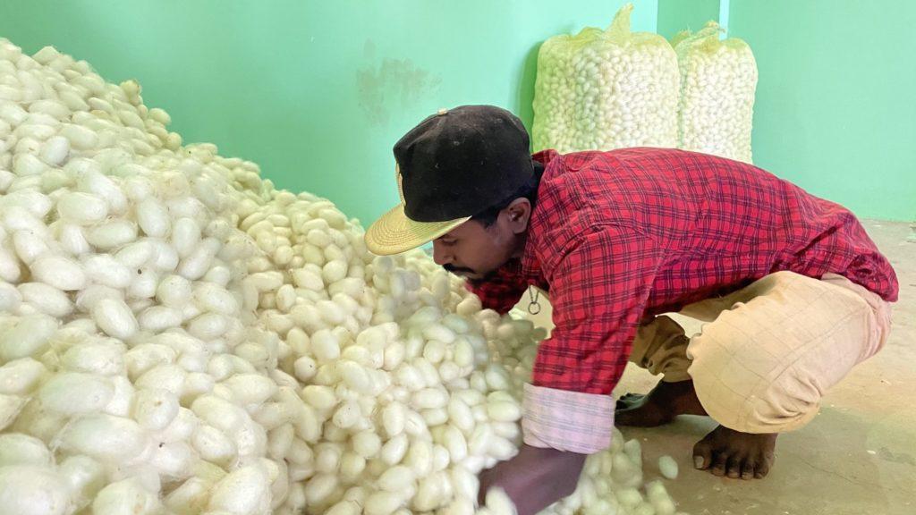 ReshaMandi employee testing Cocoons